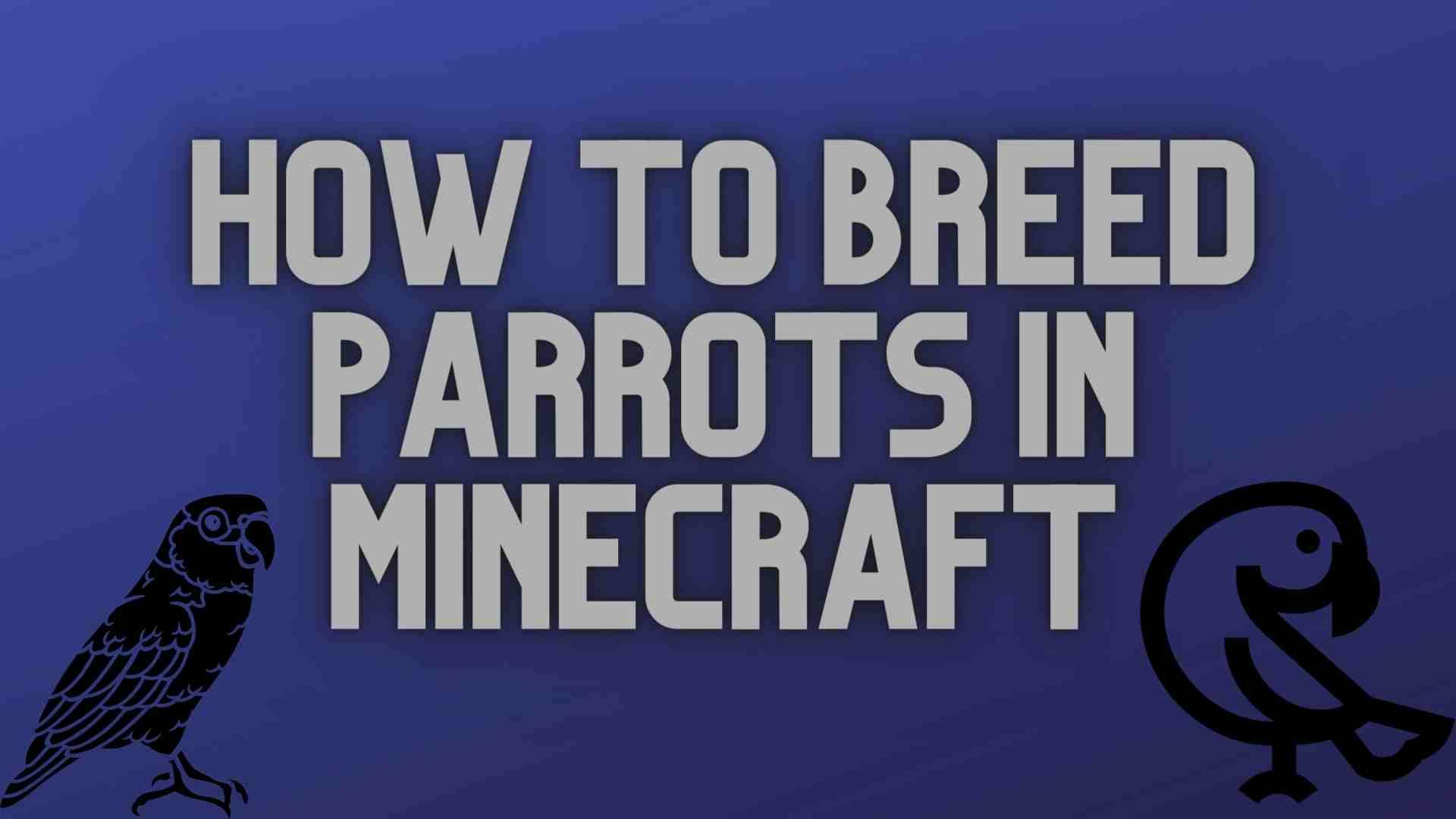Breeding Parrots in Minecraft